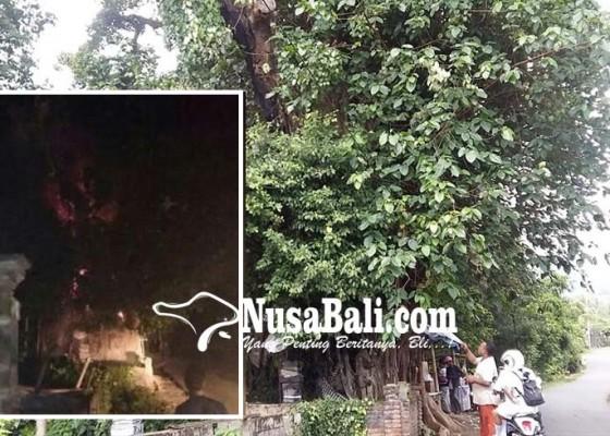 Nusabali.com - dipercaya-bertuah-untuk-nunas-tamba-selalu-terbakar-saat-dinihari
