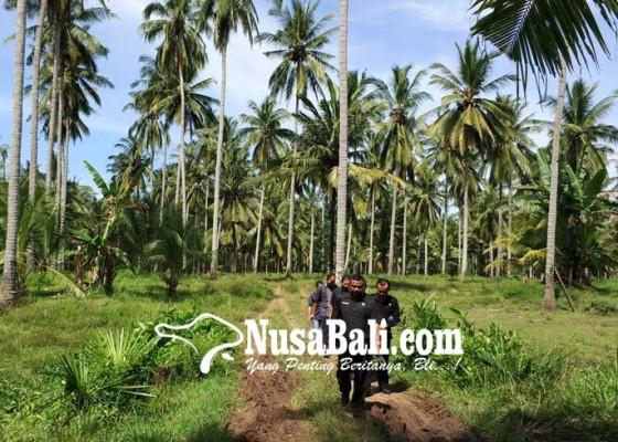 Nusabali.com - bupati-artha-tak-akan-keluarkan-izin-tambak
