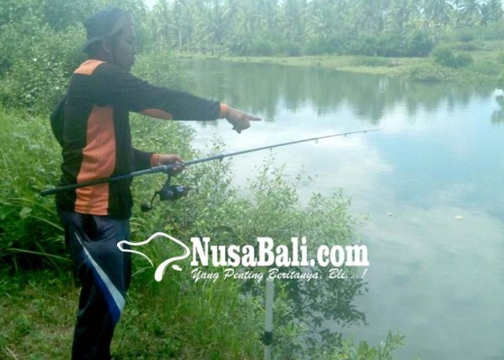 Nusabali.com - warga-keluhkan-bangkai-ayam-dibuang-ke-sungai-tukadaya