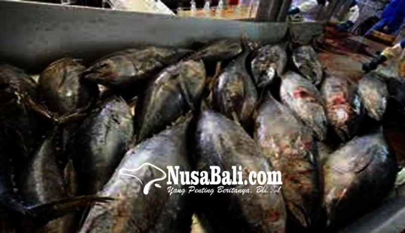 www.nusabali.com-60-unit-pengolahan-ikan-bali-diawasi