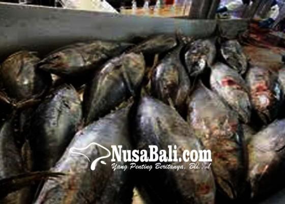 Nusabali.com - 60-unit-pengolahan-ikan-bali-diawasi
