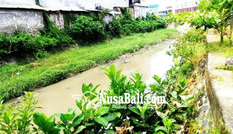 www.nusabali.com-penataan-tukad-mati-ratusan-pohon-akan-ditebang