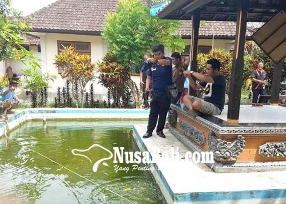 Nusabali.com - warga-rutan-lomba-mancing-ikan-lele