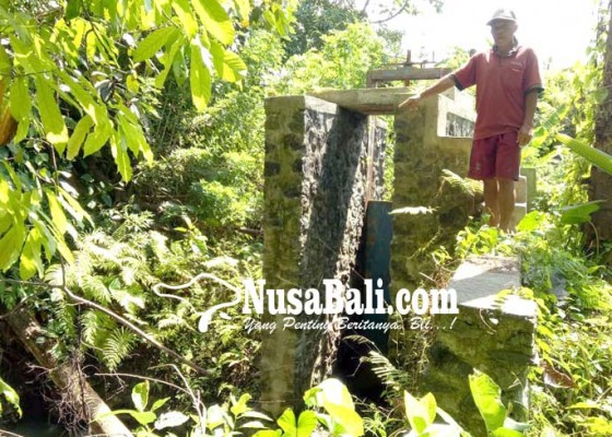 Nusabali.com - embung-bantuan-pusat-jebol-harapan-petani-kandas