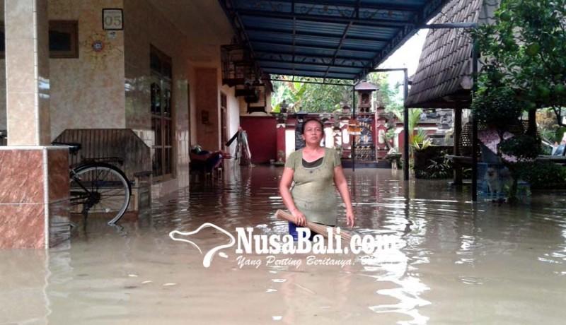 www.nusabali.com-hujan-3-jam-rumah-di-kaliakah-kebanjiran