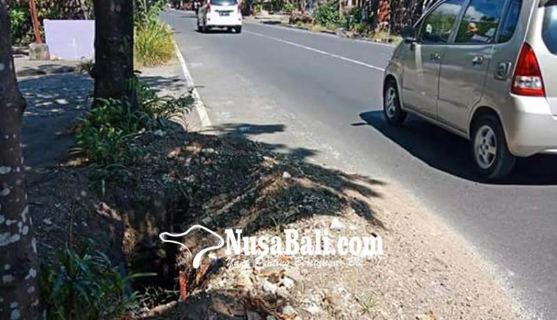 www.nusabali.com-hindari-gundukan-tabrak-pohon-pemotor-tewas