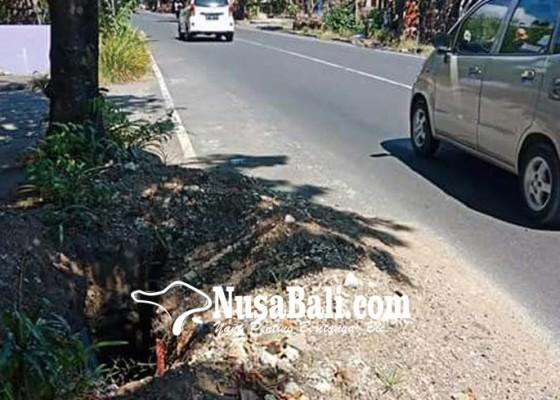 Nusabali.com - hindari-gundukan-tabrak-pohon-pemotor-tewas