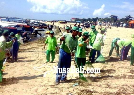 Nusabali.com - bersihkan-sampah-di-tanjung-benoa-dinas-lhk-alihkan-tim-pantai-kuta