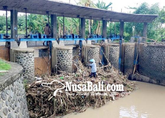 Nusabali.com - pintu-air-bendung-tersumbat-sampah-warga-khawatir-banjir-susulan