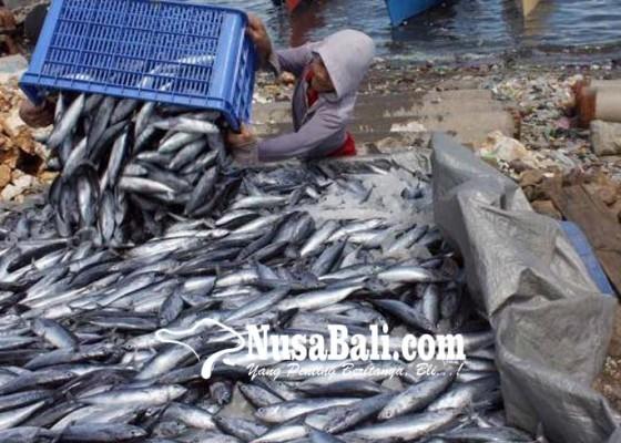 Nusabali.com - produksi-hasil-perikanan-ditarget-meningkat-10-persen-di-2018