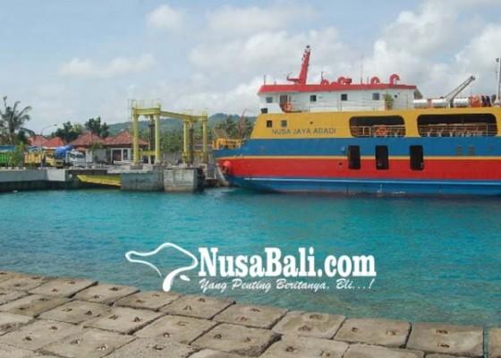 Nusabali.com - ketahuan-ternak-bebas-tiket-roro