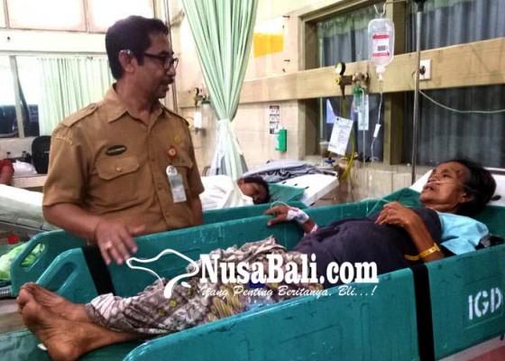 Nusabali.com - jaga-anak-sakit-seorang-nenek-masuk-ugd