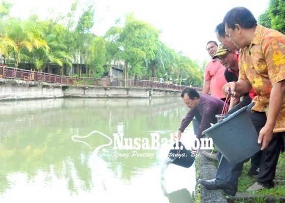 Nusabali.com - ribuan-benih-ikan-ditebar-di-kolam-gkbk-jembrana