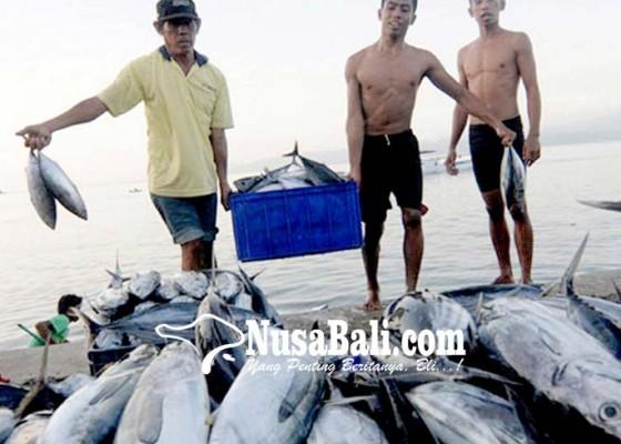 Nusabali.com - tangkapan-tuna-menurun-awak-kapal-dirumahkan