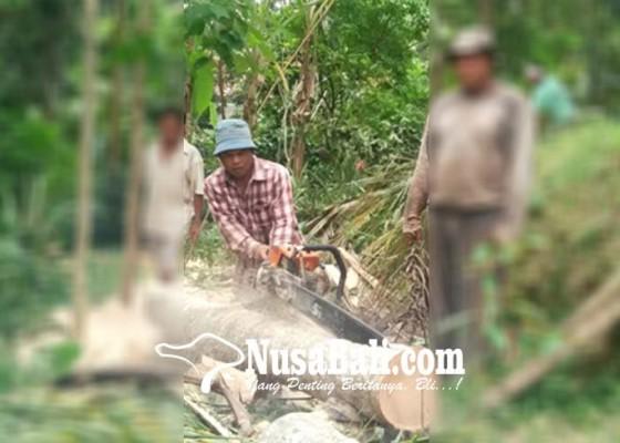 Nusabali.com - sering-alami-kejadian-mistis-dimintai-laklak-hingga-diikuti-ke-rumah