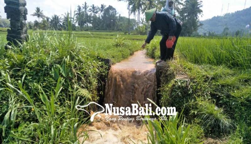 www.nusabali.com-warga-keluhkan-air-disertai-tanah-yang-mengganggu-lahan-pertanian