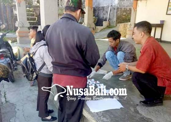 Nusabali.com - desa-baturiti-eliminasi-anjing-liar