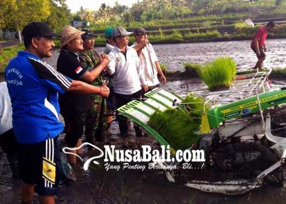 Nusabali.com - tentara-bantu-petani-tanam-padi