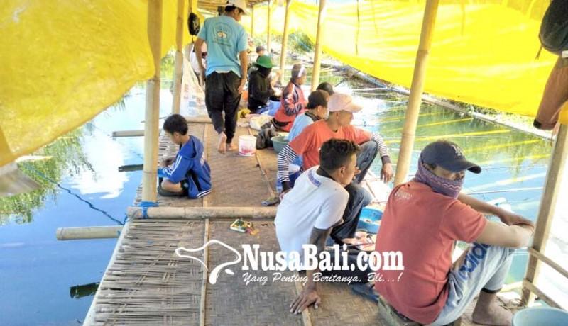 www.nusabali.com-warga-sewakan-kolam-pancing
