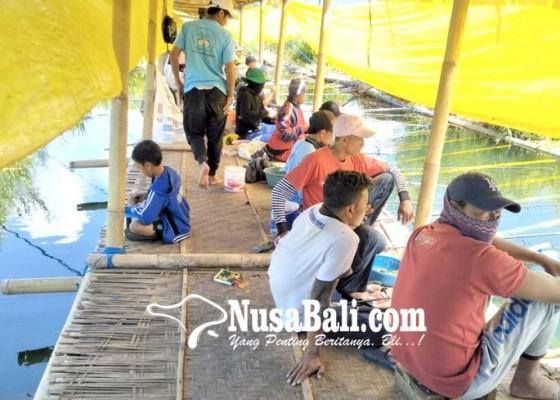 Nusabali.com - warga-sewakan-kolam-pancing