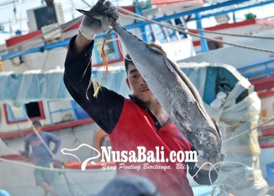 Nusabali.com - industri-perikanan-perlu-percepatan-pembangunan