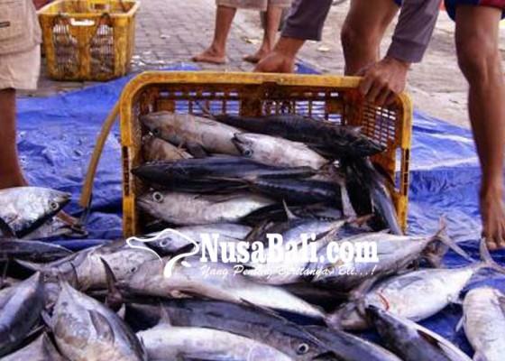Nusabali.com - ppi-kusamba-tidak-terdaftar-di-pusat