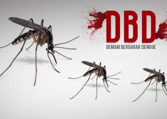 Nusabali.com - tabanan-siaga-darurat-db