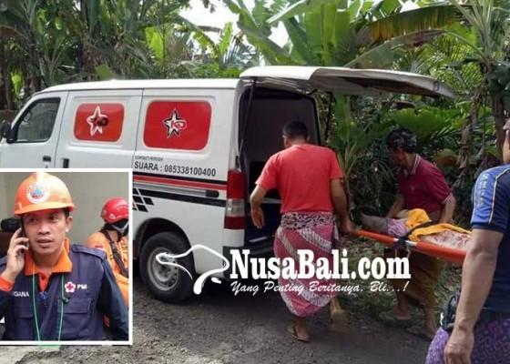 Nusabali.com - mobil-ambulans-dikemudikan-langsung-perbekel-wayan-suara