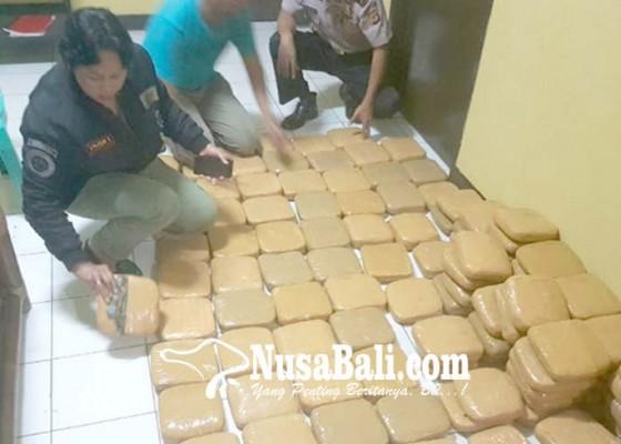 Nusabali.com - 125-kg-ganja-kering-siap-edar-diamankan