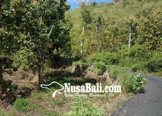 Nusabali.com - penyaluran-bnpt-e-warong-terhadang
