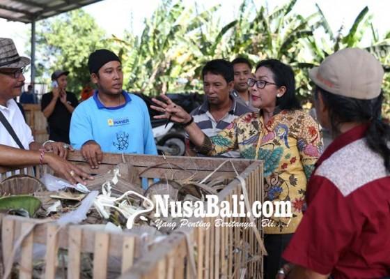 Nusabali.com - pelet-toss-perlu-campuran-15-persen-sampah-plastik