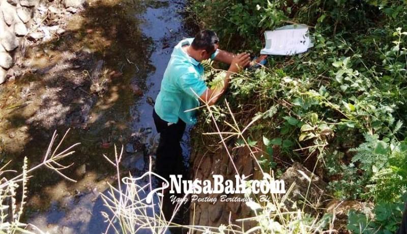 www.nusabali.com-ratusan-hektare-lahan-terancam-tidak-produktif