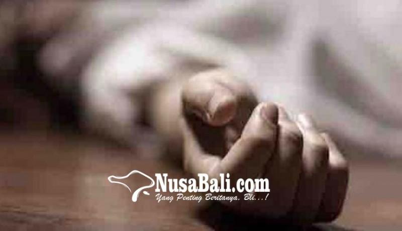 www.nusabali.com-seorang-jatuh-dari-pohon-cengkih-seorang-tewas-tersetrum