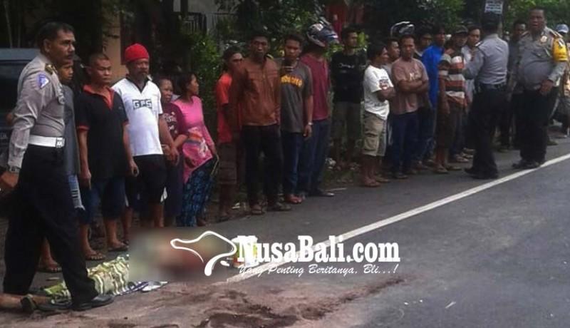 www.nusabali.com-pemudik-bermotor-tabrak-truk-satu-tewas-satu-terluka