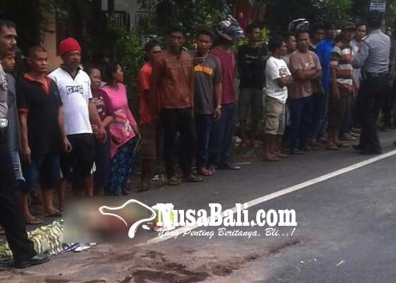 Nusabali.com - pemudik-bermotor-tabrak-truk-satu-tewas-satu-terluka