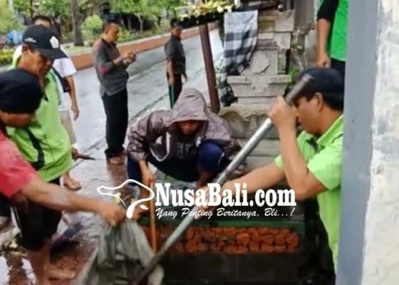 Nusabali.com - diguyur-hujan-pohon-bertumbangan