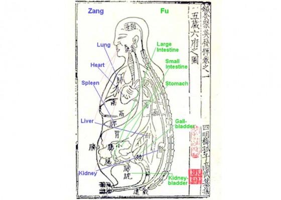 Nusabali.com - pengobatan-tradisional-untuk-dispepsia-3