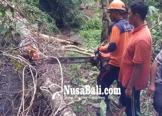 Nusabali.com - pura-hyang-aya-ketewel-makin-hancur