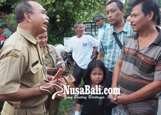 Nusabali.com - anjing-rabies-gigit-5-warga