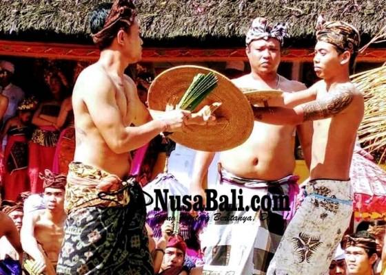 Nusabali.com - usaba-sambah-krama-tenganan-gelar-perang-pandan