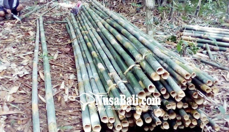 www.nusabali.com-bambu-tak-tergerus-zaman