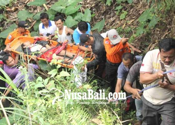 Nusabali.com - tersesat-jatuh-ke-jurang-15-meter