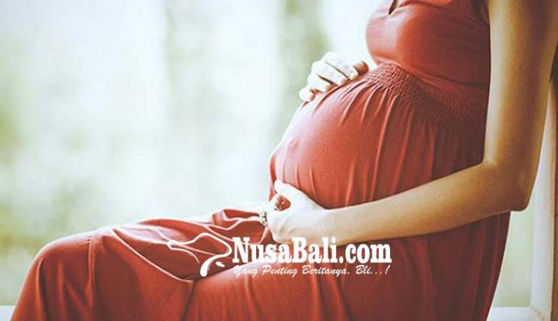 www.nusabali.com-sewakan-rahim-32-wanita-ditangkap