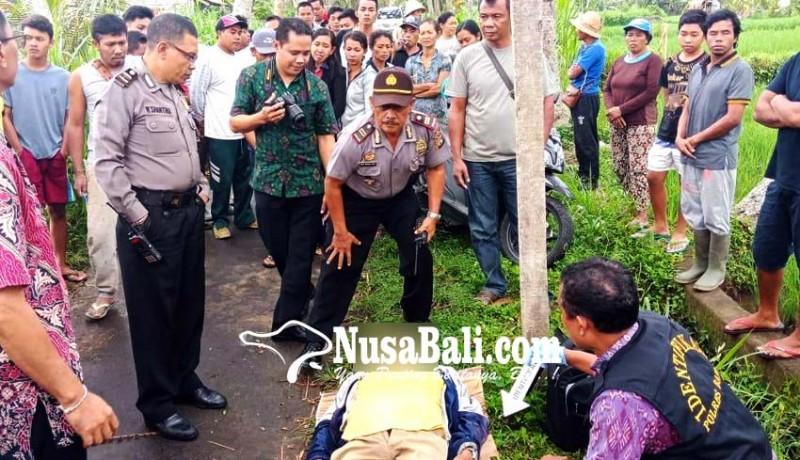 www.nusabali.com-petani-ditemukan-tewas-di-pematang-sawah