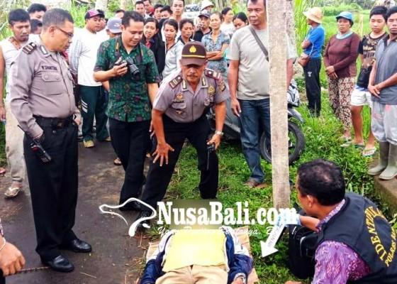 Nusabali.com - petani-ditemukan-tewas-di-pematang-sawah