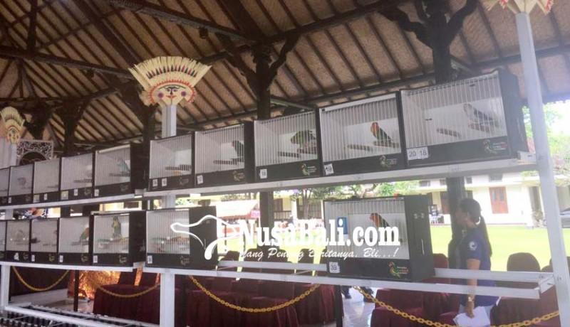 www.nusabali.com-ratusan-pecinta-burung-ikut-kontes-beauty-bird