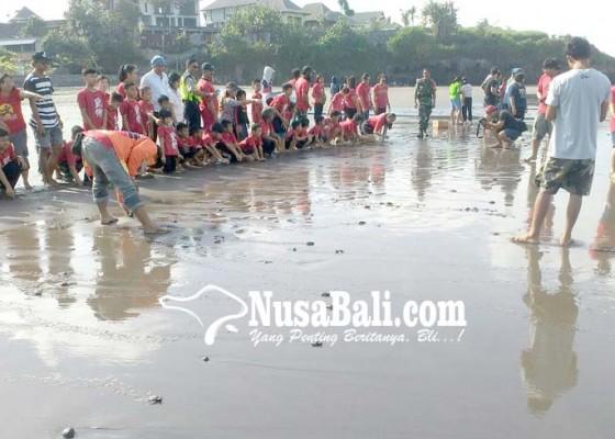 Nusabali.com - sebanyak-75-tukik-dilepas-di-pantai-yeh-gangga