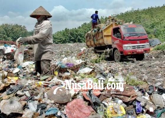 Nusabali.com - sampah-di-tps-liar-belum-diuruk