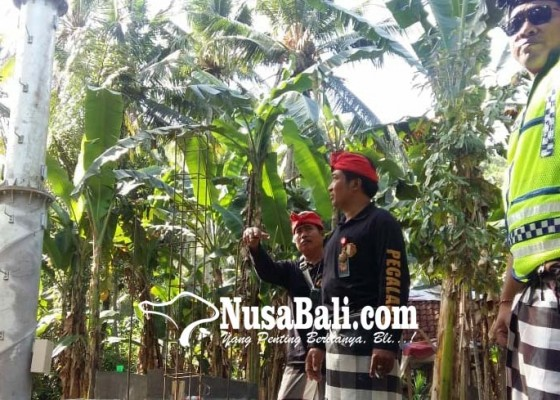 Nusabali.com - pembangunan-tower-di-pikat-distop
