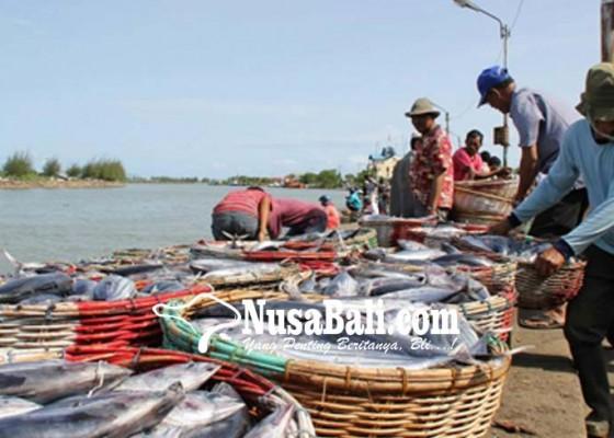 Nusabali.com - posko-ikan-invasif-sepi-penyetor-ikan